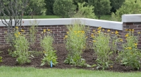 Macomb County Commercial Landscaping