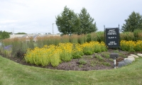 Commercial Landscape Macomb County