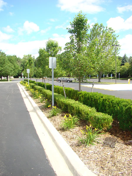 Commercial Landscape Macomb County Michigan