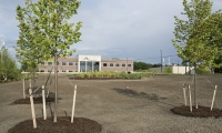 Commercial Landscape Design Macomb County