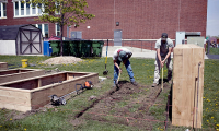 Macomb County Landscaping - LIttle Green Gardeners
