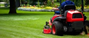 Commercial Lawn Maintenace Macomb County