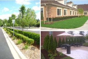 Commercial Landscaping Macomb County