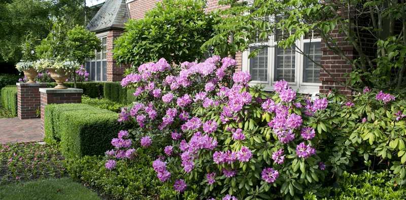 Michigan Landscape Expert Gives 4 Tips To Liven Up Your Home