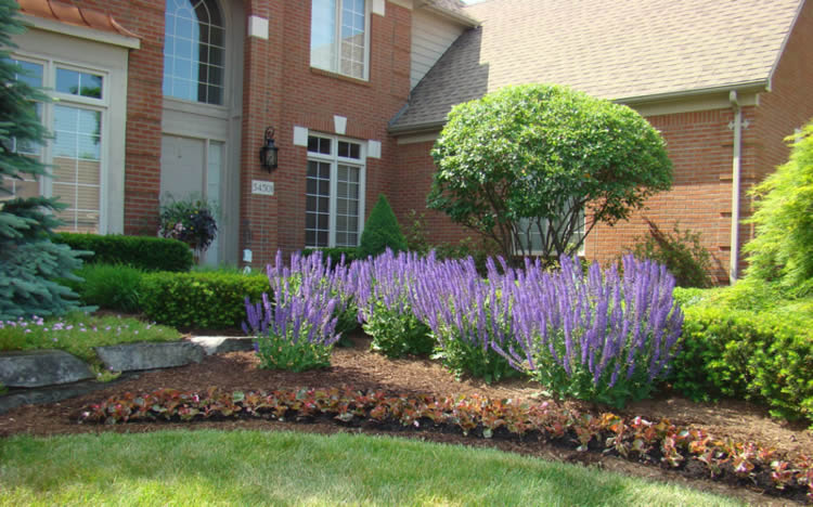 Hire a Romeo Landscaping Company